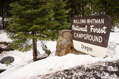 Wallowa Whitman National Forest Oregon Campground Sign USA Stock Photography