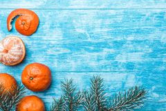 Wallpaper of azure wood, sky blue, sea. mandarins, green fir branch. Space for Xmas and New Year Message. royalty free stock photo