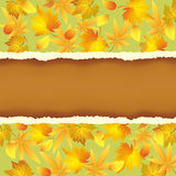 Wallpaper background with autumn leaves pattern Royalty Free Stock Image
