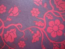 Wallpaper collections, design graphic rose flower and Cherry blossom  background, Valentine and Chinese NewYear Royalty Free Stock Image