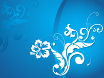 Wallpaper, creative curves and swirls on flourish Stock Images
