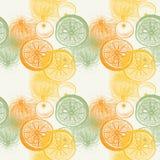 Wallpaper el modelo inconsútil con la fruta cítrica dibujada mano de las naranjas Drawi Imagen de archivo libre de regalías