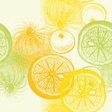 Wallpaper el modelo inconsútil con la fruta cítrica dibujada mano de las naranjas en vec Foto de archivo libre de regalías