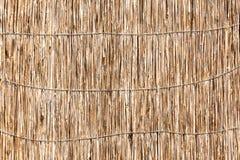 wallpaper Fondo Struttura di paglia tessuta Struttura della paglia Immagine Stock