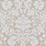 Wallpaper gray beige Stock Image