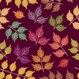 Wallpaper with leaves Stock Photography