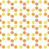 Wallpaper lemone. Background orange. Vector citrus. Royalty Free Stock Photography
