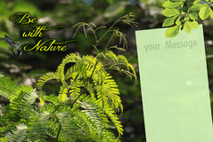 Wallpaper with Message Note Royalty Free Stock Image