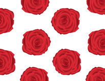 Wallpaper pattern with of red roses Royalty Free Stock Photography