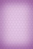 Wallpaper - pink background Royalty Free Stock Photography