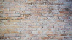 Wallpaper of raw brick tile Royalty Free Stock Image