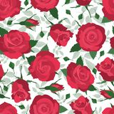 Wallpaper with roses Royalty Free Stock Image