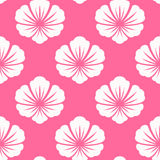 Wallpaper seamless with white flower Stock Images