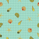 Wallpaper with shell Royalty Free Stock Images