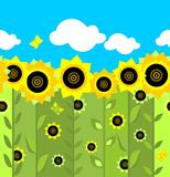 Wallpaper with sunflowers Royalty Free Stock Photos