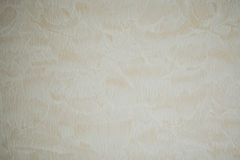 Wallpaper texture background in light sepia toned art paper or w Royalty Free Stock Images