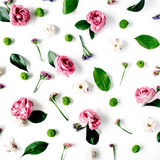 Wallpaper, texture. Pink roses and white flowers on white background Royalty Free Stock Image
