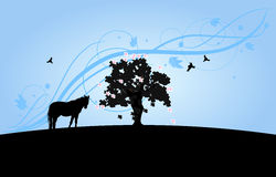 Wallpaper with tree and horse silhouette Stock Photos