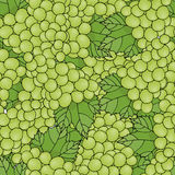 Wallpaper vector green grapes. Seamless pattern background grapes. Royalty Free Stock Photography