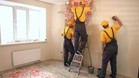 Wallpapering dos especialistas video estoque