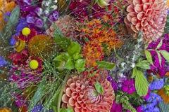 Wallpapers garden flowers Stock Photo