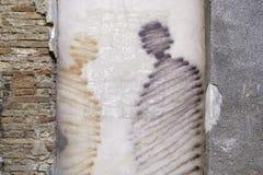 Walls alive. Graffiti on a wall in Logroño Royalty Free Stock Photo