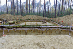 The walls of the archaeological excavation in the forest Stock Photos