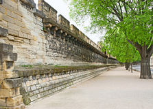 Walls of Avignon stock image