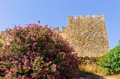 Walls of bloody castle and fortress of Frangokastello, island of Crete Stock Image