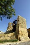 Walls of Briones, La Rioja, Spain Royalty Free Stock Images