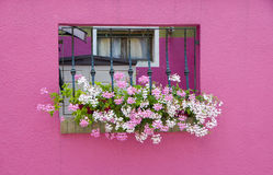 Walls of Burano, Venice Stock Photography