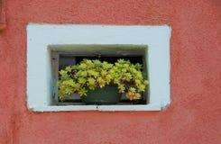 Walls of Burano, Venice Royalty Free Stock Photo