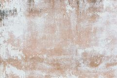Walls covered with dust and mold Stock Image