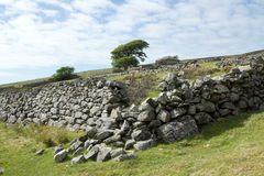 Walls and derelict building. Broken stone wall on a hillside with green fields leads to trees and a derelict abandoned building Stock Photo