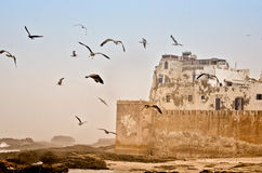 Walls of Essaouira, Morocco Royalty Free Stock Image