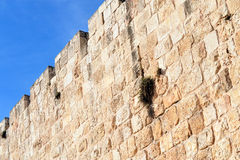 The walls of Jerusalem old city Royalty Free Stock Images
