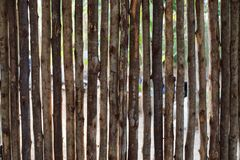 Walls made of branches. Wicker fence made of tree branches stock photos