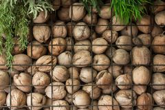 Walls are made with coconut layer stack. The walls are made with coconut layer stack royalty free stock images