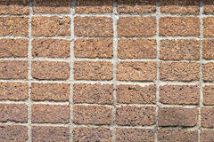 Walls made of laterite stone Stock Photos