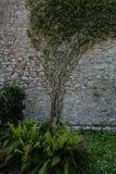 Walls of medieval Girona Stock Image