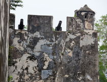 Walls and old canons. Monte fort. Macau. China. Royalty Free Stock Photo