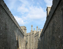 Walls of palace Stock Images