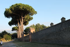 The walls of Pompeii Stock Photo