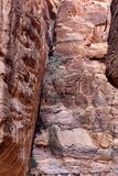 Petra in Jordan. The walls of the Siq, narrow passage that leads to Petra, Jordan Royalty Free Stock Image
