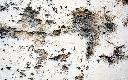 Paint, graffiti, black white colors on old antique Venetian walls Royalty Free Stock Image