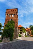 Walls tower Wawel Royal Castle in Krakow Royalty Free Stock Photos