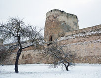 Walls and towers of the fortress Izborsk winter Royalty Free Stock Photography