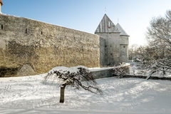 The walls and towers of old town Tallinn in winter . Stock Photos