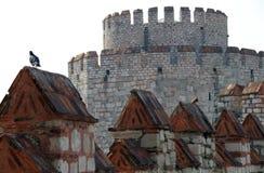 Walls of Yedikule Zindanlari, Istanbul, Turkey Stock Image