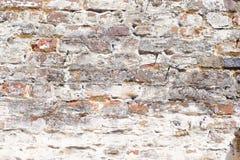 Wallstructure 免版税库存图片
